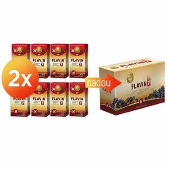 2x Flavin7 H 8x100 ml+ Flavin7 cu Stevie 10x50 ml Gratuit